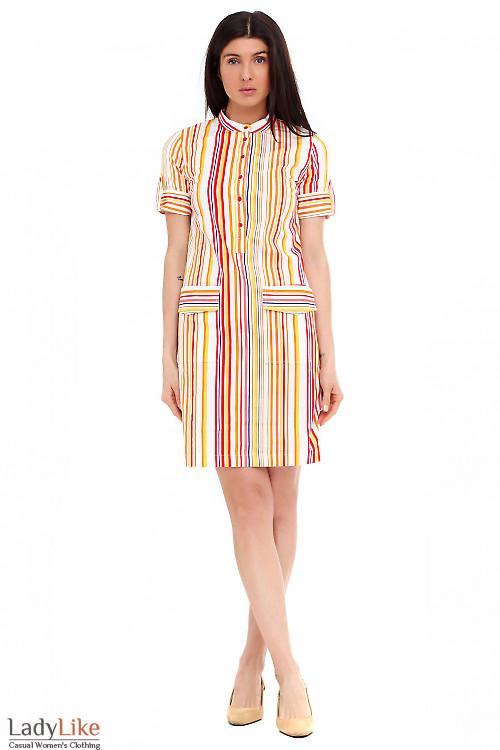 Платье летнее в яркую полоску. Деловая женская одежда фото