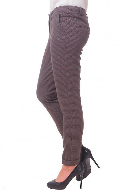 Купить брюки в коричневый узор Деловая женская одежда
