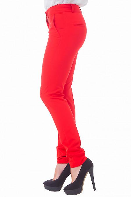 Купить женские красные брюки Деловая женская одежда