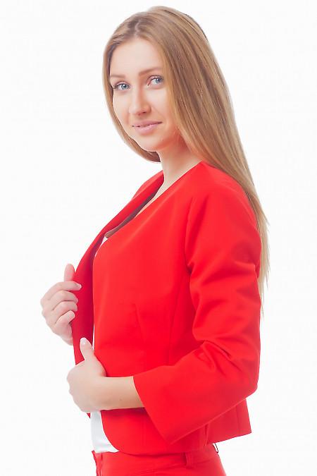 Купить Жакет-болеро красного цвета Деловая женская одежда