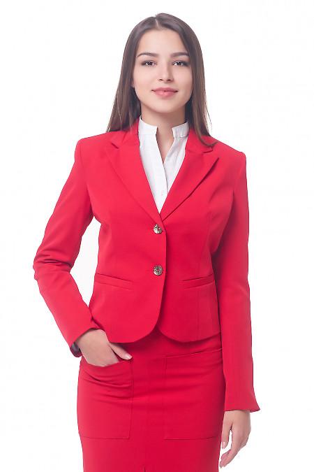 Красный классический женский жакет. Деловая женская одежда