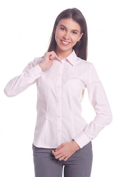 Женская розовая рубашка. Деловая женская одежда