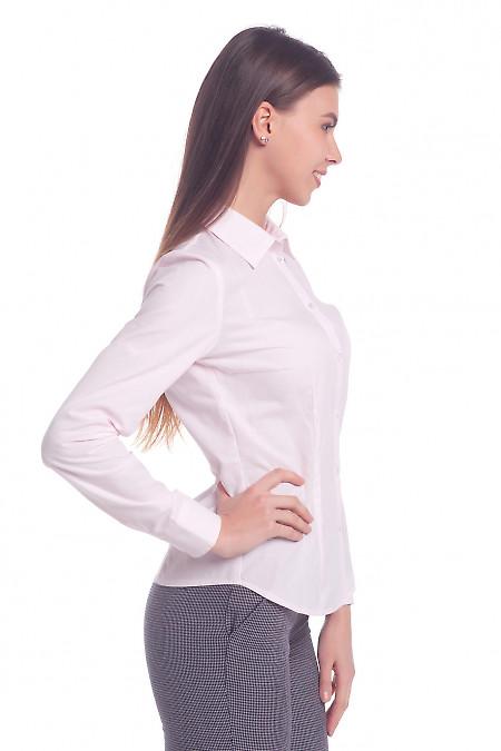 Бледно-розовая блуза фото