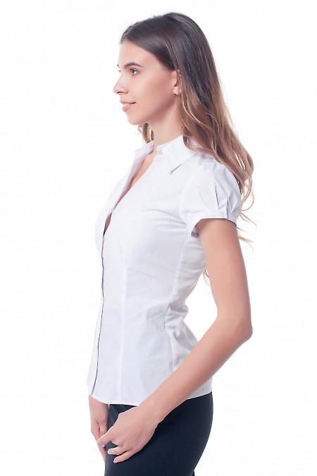 Купить белую блузку с планкой в точечку Деловая женская одежда фото