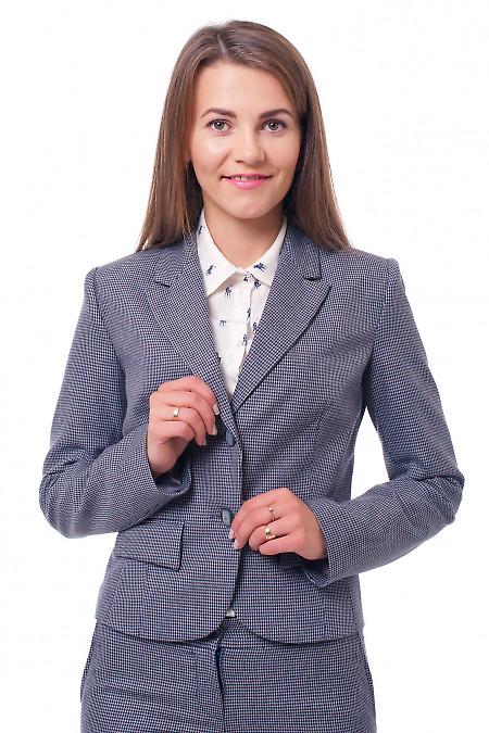 Жакет в бордовые лапки Деловая женская одежда фото