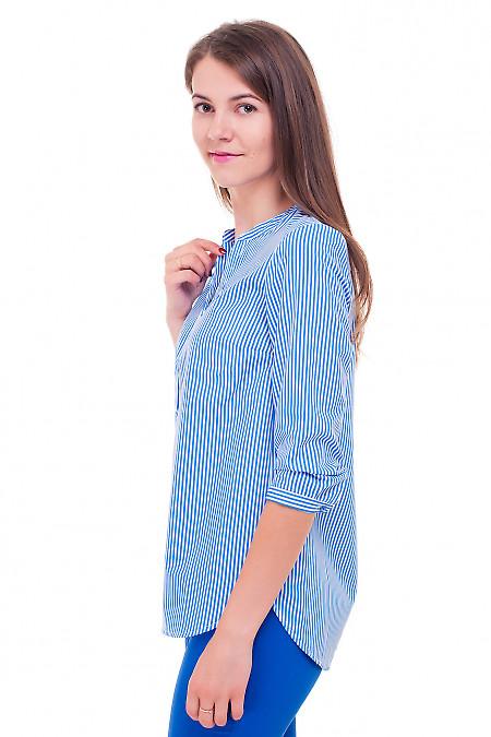 Купить блузку в яркую голубую полоску Деловая женская одежда фото