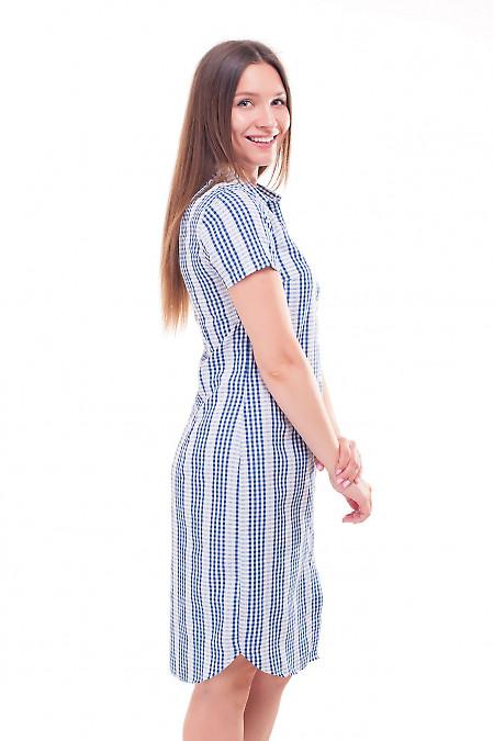 Платье-сафари в синюю клеточку