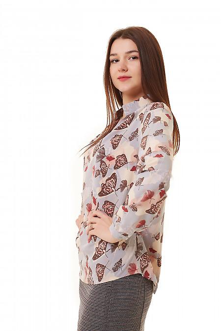 Купить серую блузку в бабочки Деловая женская одежда фото