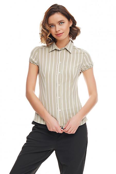 Блузка зелёная в белую полоску. Деловая женская одежда фото