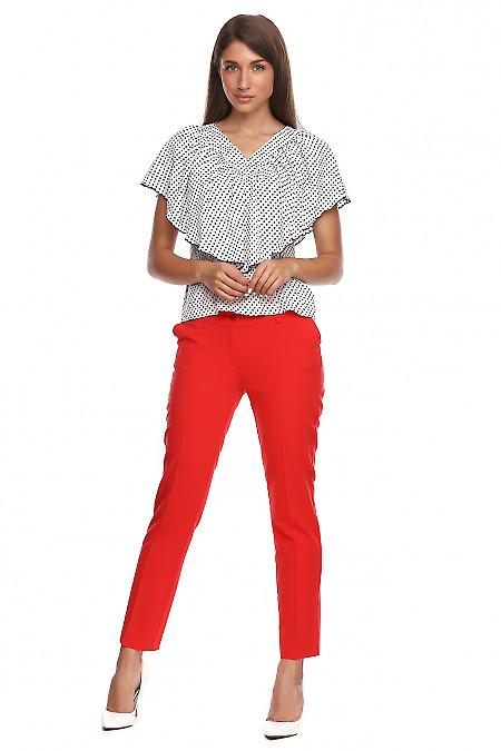 Купить красные укороченный брюки. Деловая женская одежда фото