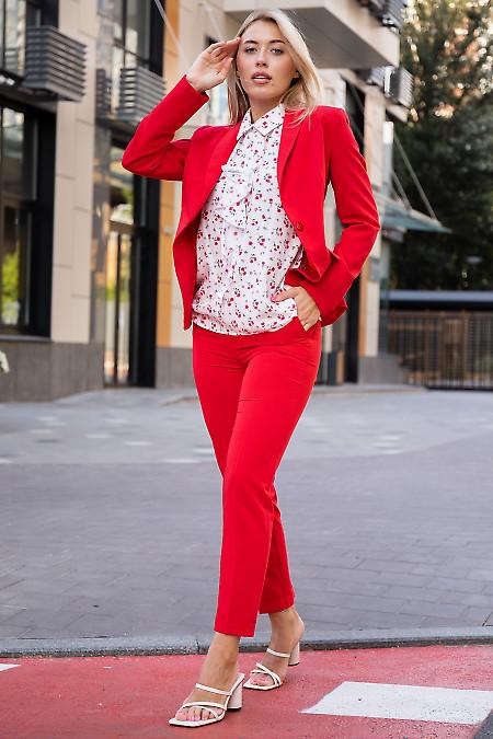 Купить красный женский костюм с брюками. Деловая женская одежда фото