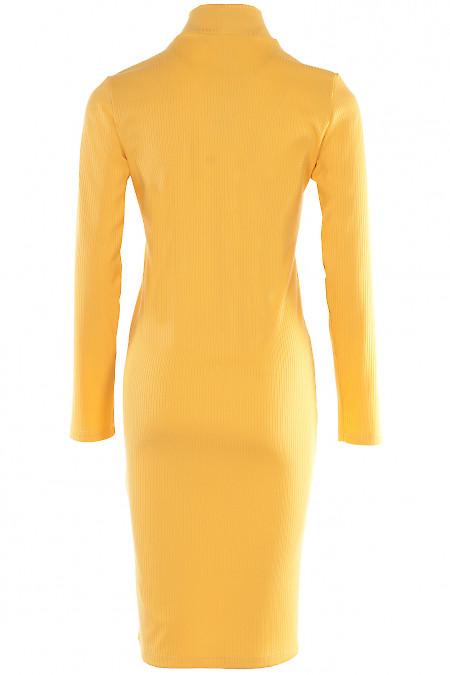 Сукня з резинки Діловий жіночий одяг фото