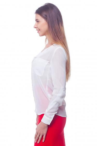 Блуза шифоновая деловая