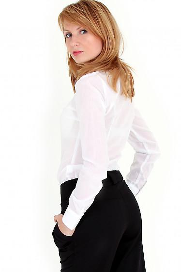 Фото Блузка белая строгая вид сзади Деловая женская одежда
