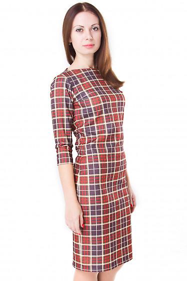 Фото Платье трикотажное в клетку Деловая женская одежда