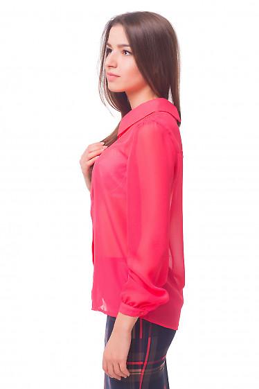 Купить коралловую шифоновую блузку Деловая женская одежда