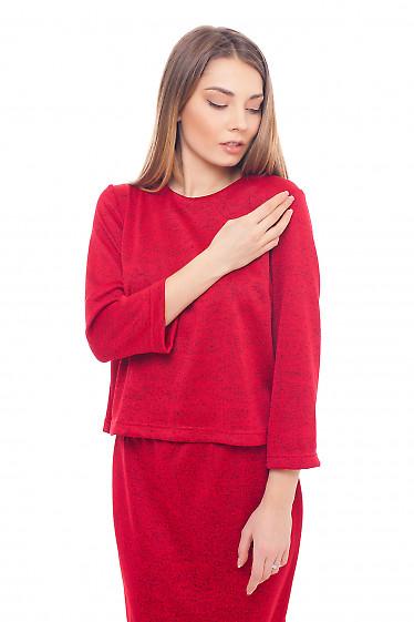 Блуза красная теплая трикотажная. Деловая женская одежда