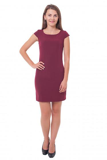 Купить платье-футляр бордовое Деловая женская одежда фото