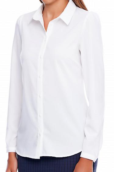 Белая рубашка Деловая женская одежда фото