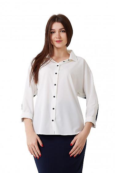 Блузка белая с синей полосой Деловая женская одежда фото