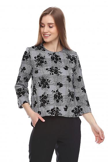Купить блузку в клетку с чёрным набивным рисунком. Деловая женская одежда фото