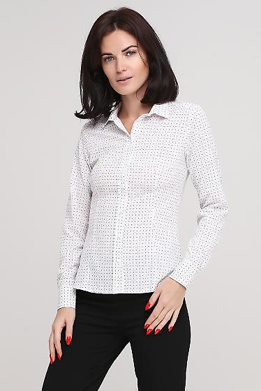 Блузка белая в точечку Деловая женская одежда фото