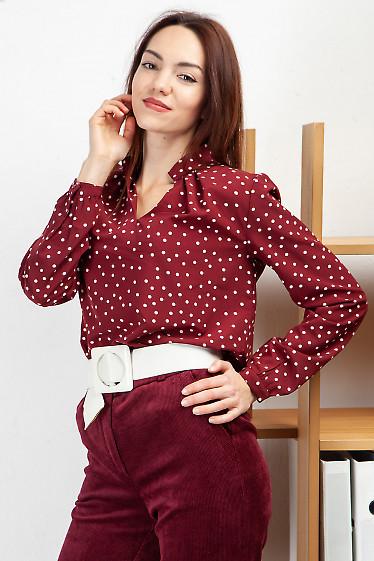 Блузка с защипами бордовая в горох. Деловая женская одежда фото