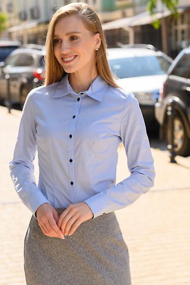 Рубашка женская голубая классическая. Деловая одежда