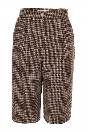 Теплые шорты в коричневую лапку. Деловая женская одежда фото