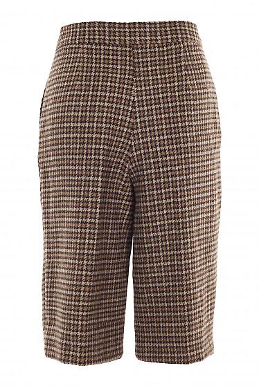 Купить теплые шорты в коричневую лапку. Деловая женская одежда фото